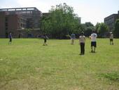 2009足壘球